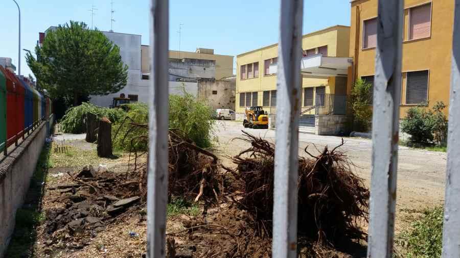 Progetti Esterni Scuola Primaria : Bitonto mila euro alla scuola u ccassanou d via libera al